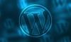 Prémiové šablony pro Wordpress