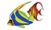 Ryby a rybičky - burza