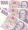 Půjčka do 5.000 Kč
