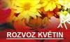 Doručování květin po celé ČR